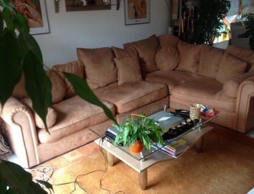 Todos los motivos para NO comprar un sofá de segunda mano